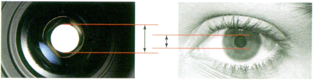 Pupille de sortie